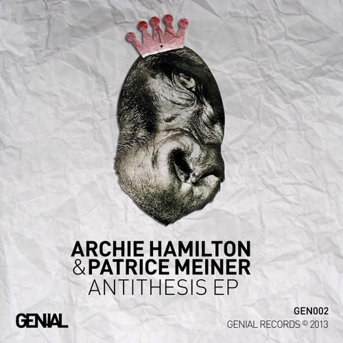 Patrice Meiner & Archie Hamilton - Comatose Commodity (Dubsons remix)