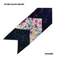 In The Valley Below Peaches Artwork