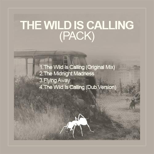 The Wild Is Calling (Original Mix