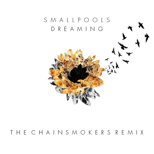 Dreaming by Smallpools (The Chainsmokers Remix)