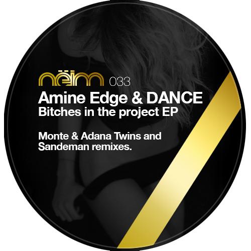 [Neim033] Amine Edge & DANCE - Bitches in the project (Original mix)