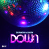 DSKOTEK & Zoo Funktion - Down (Original Mix) *FREE DOWNLOAD*