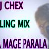 Hitha_Mage_Parala_Sad Mix_Dj cHex