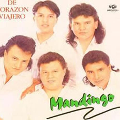 Mandingo - Perfume de Amor