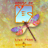 Yes - Homeworld (The Ladder) (live) (excerpt)