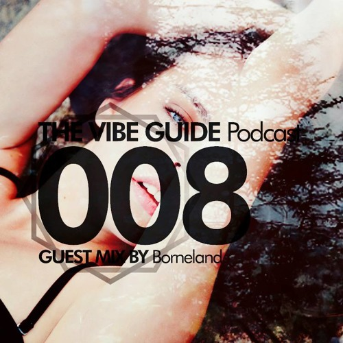 THE VIBE GUIDE Podcast 008 Guest Mix by Borneland