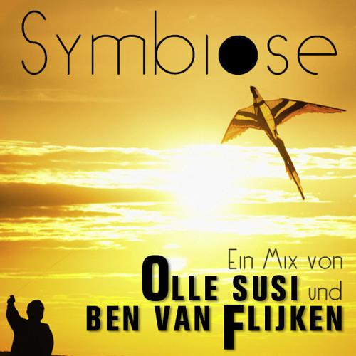 Olle Susi & Ben van Flijken - Symbiose