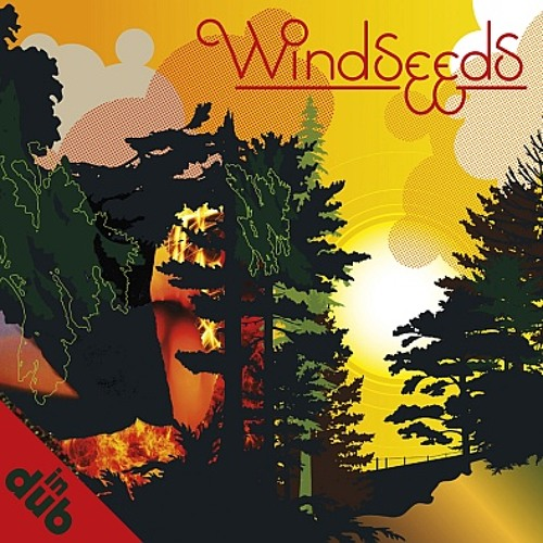 windseeds in dub - dub at 8 bft