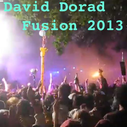 David Dorad@Fusion_Bachstelzen 2013