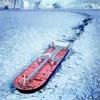 Arctic Warrior (Vile Shadow Remix)