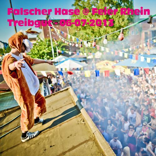 Falscher Hase at Feier Rhein - Treibgut - 06-07-2013