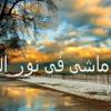 Free Download ماشى فى نور الله للنقشبندى Mp3