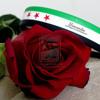 Free Download وفيق حبيب كبرتي يا صغيري Mp3