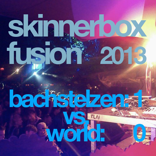 live at the FUSION FESTIVAL 2013 (bachstelzen-1 : world-0)