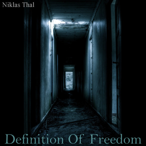 Niklas Thal - Definition Of Freedom (feat. Tyler Durden) [FREE DOWNLOAD]