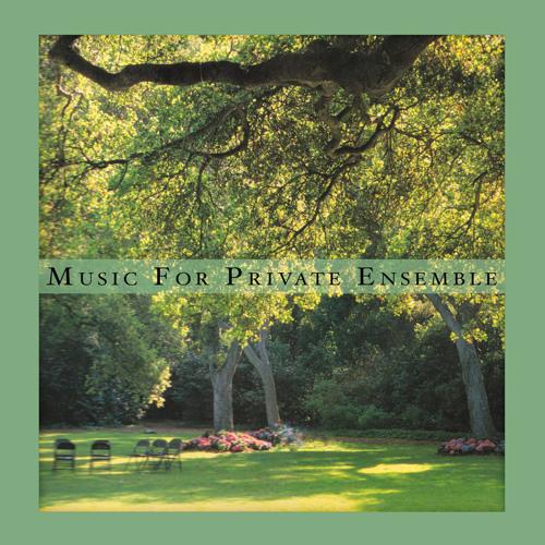 sean mccann - music for private ensemble (album preview)