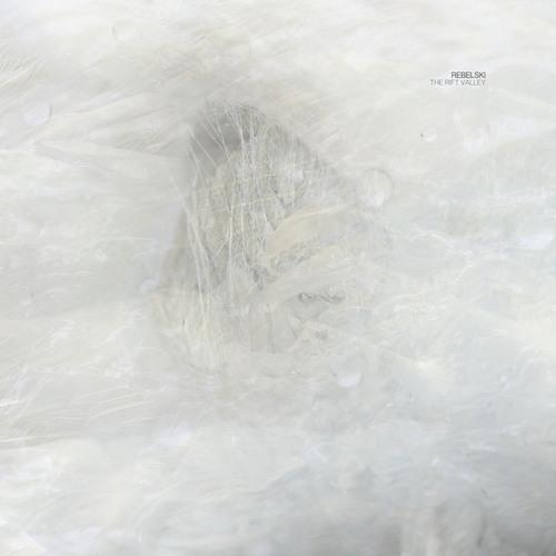 Rebelski - The Rift Valley (Lee Van Dowski Binary Re-Up) (Cadenza88) [Teaser]