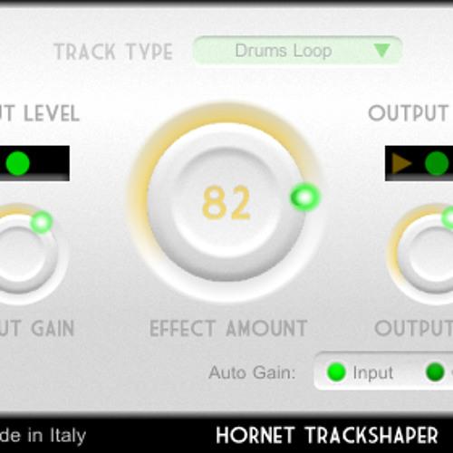HoRNet TrackShaper Electronic Demo