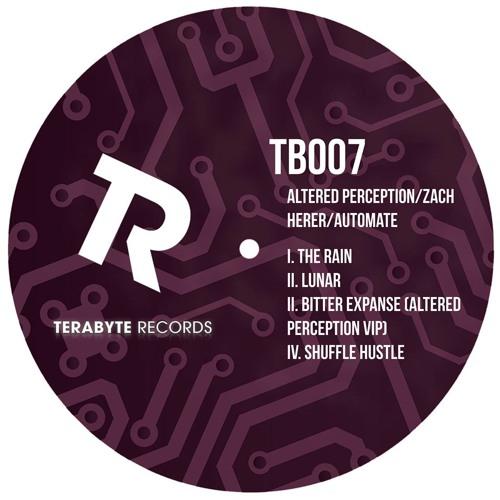 The Rain w/ Zach Herer [Terabyte Records]