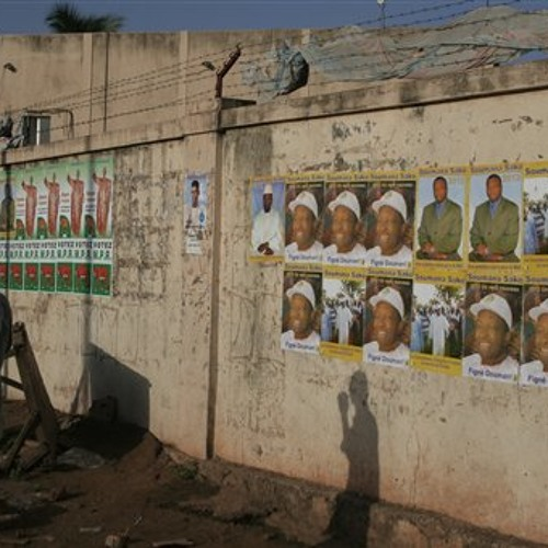 Mali prepares for elections, developing legal infrastructure in Burma and using trees to feed people