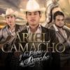 Ariel Camacho y Los Plebes Del Rancho Me Gustas Mucho