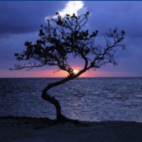 Belize (Dilla prod.) RIP J DILLA