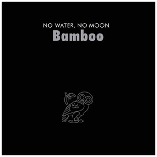 Bamboo - Questions