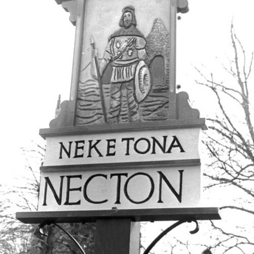 Neketona Live 2013