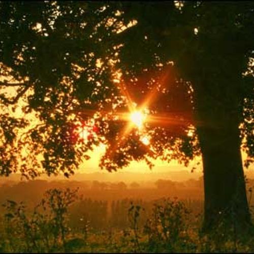 Sunrise Norah Jones cover