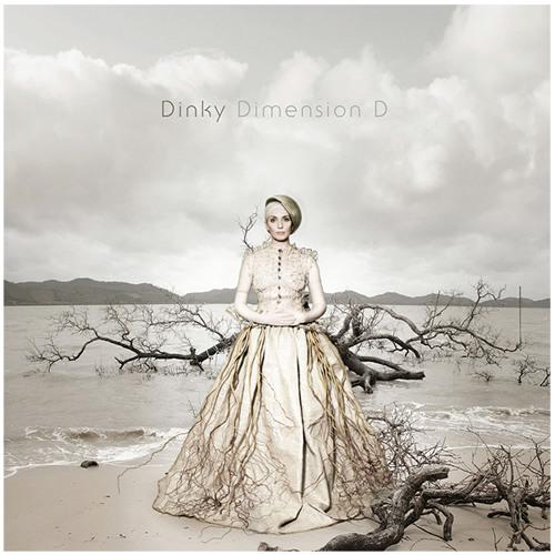 B1. Dimension D