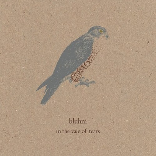 Bluhm - Willow