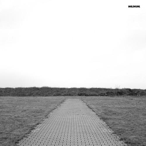 Nouvelle Chance - Rmx (Original by Pupkulies&Rebecca) Wildkuhl E.P. Acker Records 015