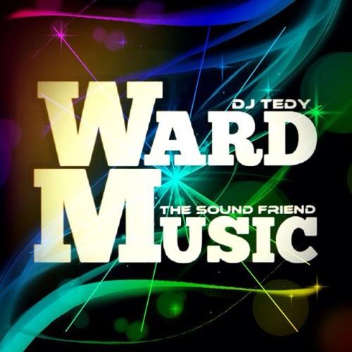 Ward Music - Night Life ( Dj TeDy & The Sound Friend ) Original Mix 2o13 BreakBeat