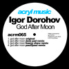 Igor Dorohov-God After Moon (Paul2Paul Remix)