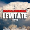 Levitate (feat. Grizzly)