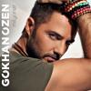 Gökhan Özen - İki Yeni Yabancı (2013 Remix) mp3