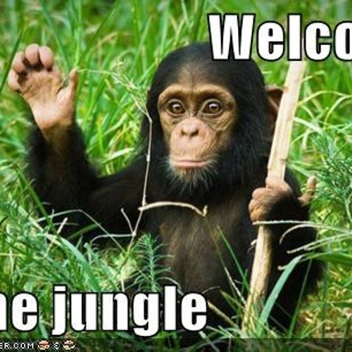 Alvaro & Mercer feat. Lil Jon - Welcome To The Jungle (Gary Bitetto Governors Edit)