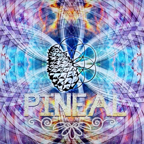 #2 PINEAL