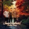 Jonas Brothers - Wedding Bells - Live - Viña del Mar -