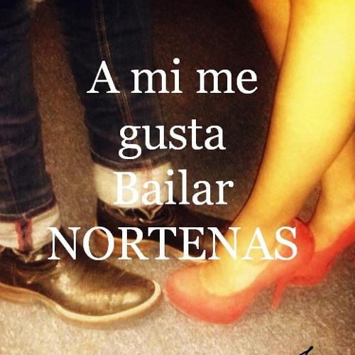 Nortenas Mix 2013 ♪ ♫ ♪ Vol. 3
