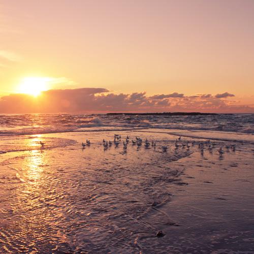 Azhot - Shore Sunset