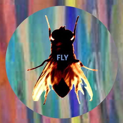 ArtDG --- FLY