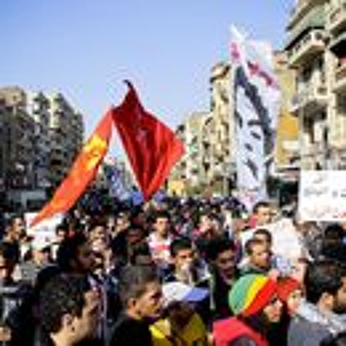 Egypt and Predictions for the Future of the Muslim Brotherhood