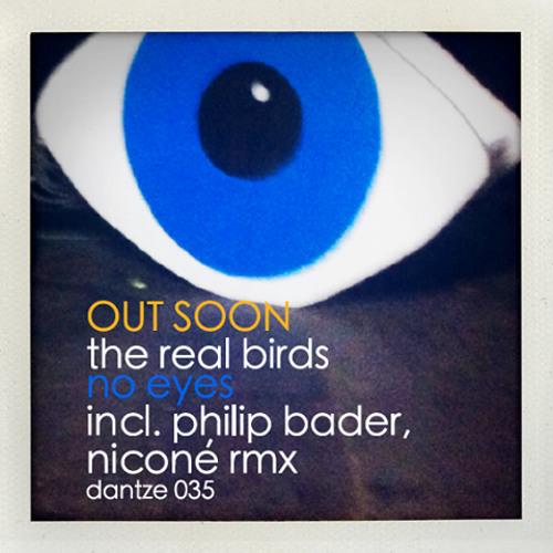 The RealBirds - No Eyes (Original Mix)- DANTZE