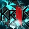 Skrilex- Voltage
