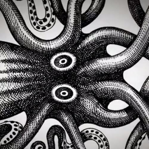 Kraken (Original Mix Verano 2013) - TreborRamirez
