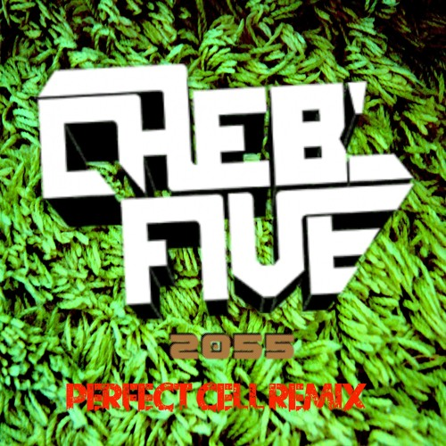 Cheb'Five - 2055 (Perfect Cell Remix) (Preview)