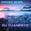 DJ Tuanesto-Winter Skies