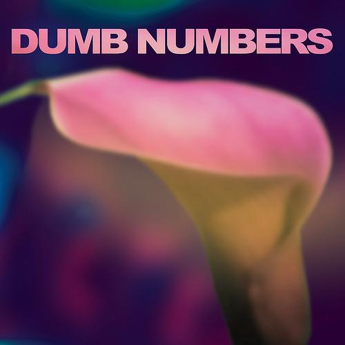 Dumb Numbers - Lost Inside