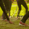 David Guetta feat. Ne-Yo, Akon Play Hard REMIX